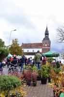 Simjūda tirgus Valmierā pulcē tirgotājus ar viduslaiku Livonijas labumiem 7