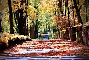 Latvijas vecākajā pilsētā Ludzā var izbaudīt krāšņu rudeni 4