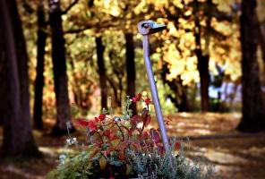 Latvijas vecākajā pilsētā Ludzā var izbaudīt krāšņu rudeni 5