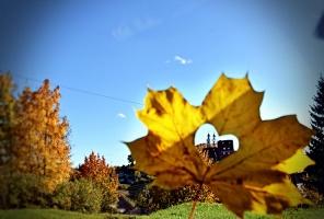 Latvijas vecākajā pilsētā Ludzā var izbaudīt krāšņu rudeni 8