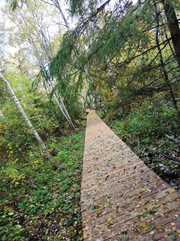 Jaundomes dabas taka Dagdā lieliski papildinās Jaundomes muižas Vides izglītības centra piedāvājumu -  tūristi varēs ne tikai iepazīt ezera pasauli ek