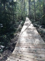 Jaundomes dabas taka Dagdā lieliski papildinās Jaundomes muižas Vides izglītības centra piedāvājumu -  tūristi varēs ne tikai iepazīt ezera pasauli ek 11