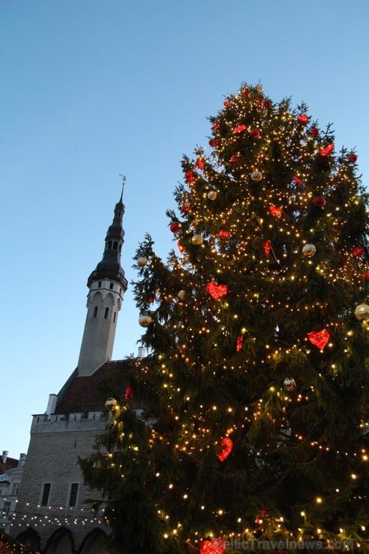 Igaunijas galvaspilsētā Tallinā valda Ziemassvētku noskaņa