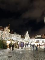 Igaunijas galvaspilsētā Tallinā valda Ziemassvētku noskaņa 5