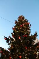 Igaunijas galvaspilsētā Tallinā valda Ziemassvētku noskaņa 10