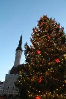 Igaunijas galvaspilsētā Tallinā valda Ziemassvētku noskaņa 12