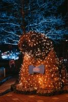 Tuvojoties Ziemassvētkiem, atpūtas centrs LIDO iemirdzējies īpaši spoži 5