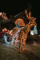 Tuvojoties Ziemassvētkiem, atpūtas centrs LIDO iemirdzējies īpaši spoži 10