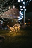 Tuvojoties Ziemassvētkiem, atpūtas centrs LIDO iemirdzējies īpaši spoži 12
