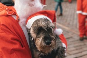 Ziemassvētku vecīšu labdarības skrējiens ir pozitīvām emocijām piepildīts pasākums, kurā ik gadu piedalās simtiem jautru dalībnieku ar mērķi palīdzēt  34