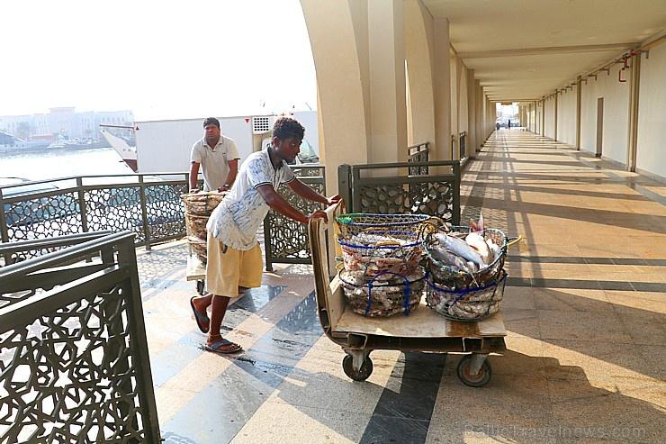 Travelnews.lv apmeklē Šārdžas zivju tirgus izsoli un ekskluzīvi iekļūst ostas zonā. Atbalsta: VisitSharjah.com un Novatours.lv 273236