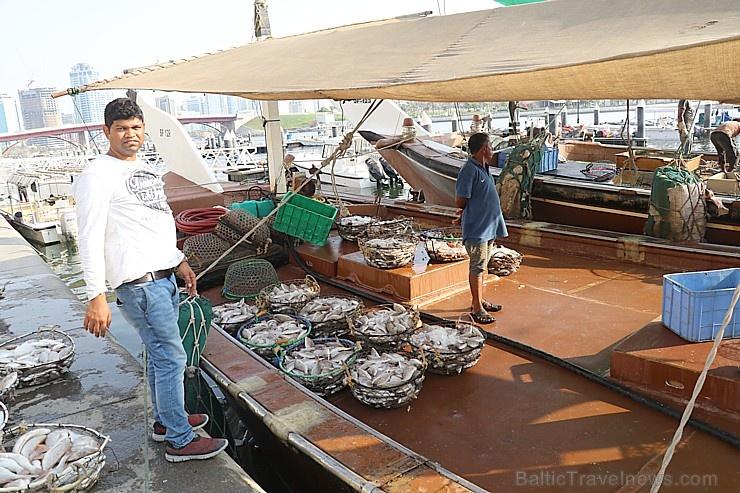 Travelnews.lv apmeklē Šārdžas zivju tirgus izsoli un ekskluzīvi iekļūst ostas zonā. Atbalsta: VisitSharjah.com un Novatours.lv 273238