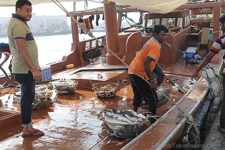 Travelnews.lv apmeklē Šārdžas zivju tirgus izsoli un ekskluzīvi iekļūst ostas zonā. Atbalsta: VisitSharjah.com un Novatours.lv 273240