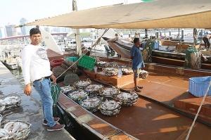 Travelnews.lv apmeklē Šārdžas zivju tirgus izsoli un ekskluzīvi iekļūst ostas zonā. Atbalsta: VisitSharjah.com un Novatours.lv 30