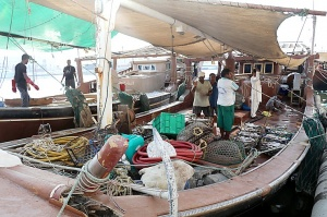 Travelnews.lv apmeklē Šārdžas zivju tirgus izsoli un ekskluzīvi iekļūst ostas zonā. Atbalsta: VisitSharjah.com un Novatours.lv 34