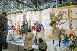 Daugavpils Ziemassvētku laikā saposusies īpaši grezni 16