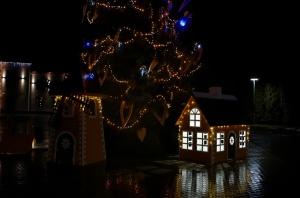 Egles iemirdzēšanās svētki ieskandinājuši Ziemassvētku gaidīšanas laiku Preiļu novadā 13