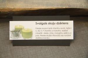 Travelnews.lv piedalās 24.01.2020 Preiļu seminārā «Ekotūrisma attīstība Latvijā un Lietuvā izmantojot ūdens resursus» 27