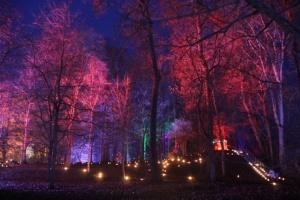 Lielvārdes muižas parku pasākumā «Sveču nakts» piepilda gaismas un uguns mistērija 1