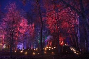 Lielvārdes muižas parku pasākumā «Sveču nakts» piepilda gaismas un uguns mistērija 15