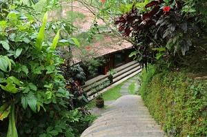 Travelnews.lv iepazīst Bali džungļu viesnīcas «Ayung Resort Ubud» villas.  «Turkish Airlines» un «365 Brīvdienas» 49