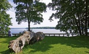 Lielvārdē ceļotāji var baudīt pastaigu dabas takās un parkos 8
