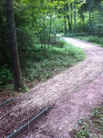 Lielvārdē ceļotāji var baudīt pastaigu dabas takās un parkos 12
