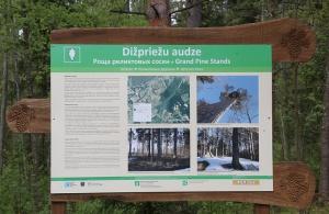 Travelnews.lv apceļo Viļakas novadu - Vēršu kalns, Baltā Brieža mototrase, partizānu vietas, nošauto ebreju piemiņas vietu 31