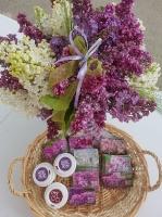 Dobeles Ceriņu dārzā var baudīt pasakaino ziedu dažādību 14