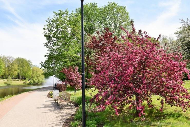 Valmiera sveicina vasaru, koši plaukstot un zaļojot