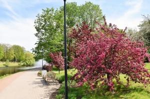 Valmiera sveicina vasaru, koši plaukstot un zaļojot 1