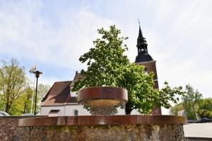 Valmiera sveicina vasaru, koši plaukstot un zaļojot 6
