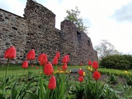 Valmiera sveicina vasaru, koši plaukstot un zaļojot 17