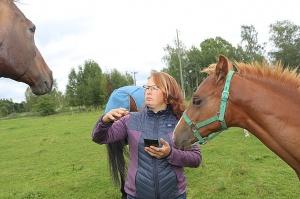 Travelnews.lv apmeklē zirgu stalli «Piķurgas» Salaspilī 2