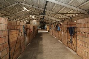 Travelnews.lv apmeklē zirgu stalli «Piķurgas» Salaspilī 13