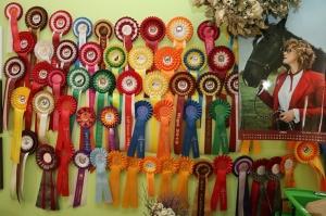Travelnews.lv apmeklē zirgu stalli «Piķurgas» Salaspilī 17