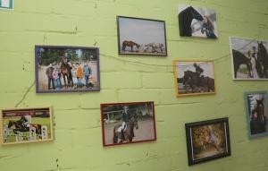 Travelnews.lv apmeklē zirgu stalli «Piķurgas» Salaspilī 18