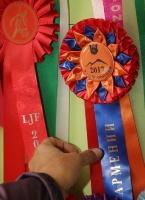 Travelnews.lv apmeklē zirgu stalli «Piķurgas» Salaspilī 19
