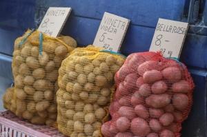Madona svin kartupeļu svētkus 1